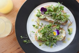 TARTINES WITH RICOTTA, MICRO-GREENS AND LIMONCELLO VINAIGRETTE