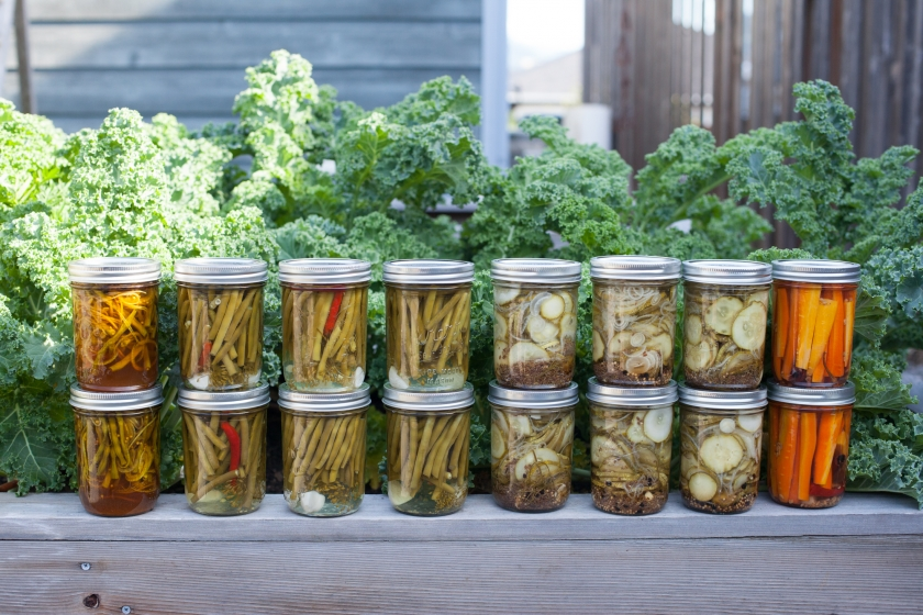 pickling canning basics